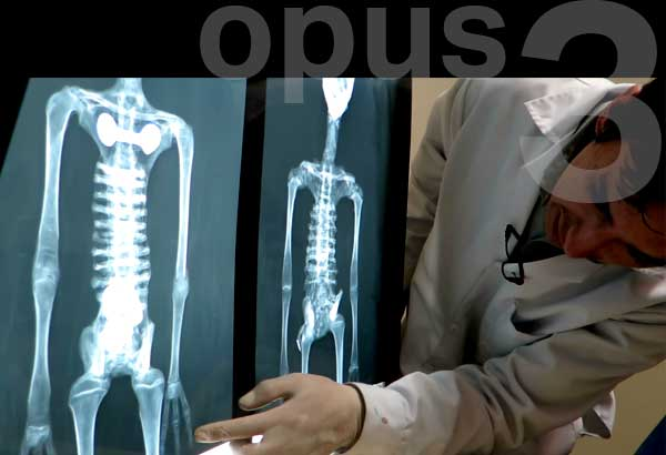 Alien Project - Opus 3 – Exogenous humanity?